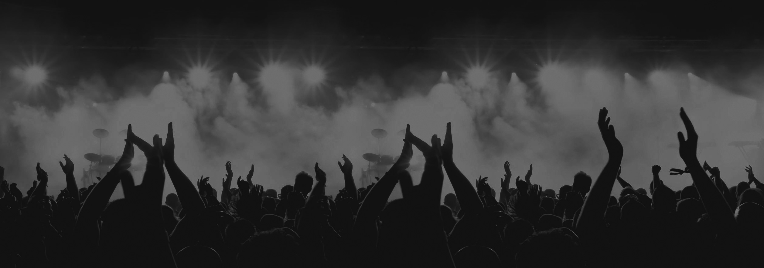 Festival Crowd Header